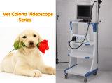 Veterinary Colono Videoscope Endoscopy Instrument
