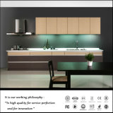 Wholesales Home Furniture Kitchen Cabinets (ZH-4066)