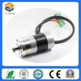 Motor BLDC for Engraving Machine (FXD57BLDC3692)