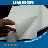 Self Adhesive PP Paper with Gray Glue Water Proof