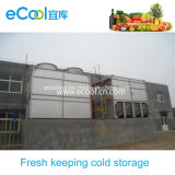 Middle Size Cold Room From Vegetables and Fruits Fresh Keeping