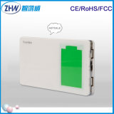 2 Output Cell Phone Charger 12000mAh LED Power Bank (H-0192)