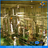 Hala Complete Cow Slaughter Machine Line for 100 Heads Per Day
