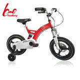 New Kids Bicycle Within Damping