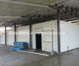 Cold Storage Room for Fish Frozen Seafood Meat Shrimp etc.