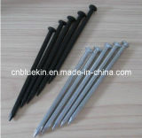 Concrete Steel Nails (1207241735)
