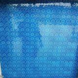 3mm-6mm Flora/Nashiji/Karatachi Patterned Glass