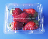 Disposable Plastic Fruit Containers Strawberry Blueberry Clamshells