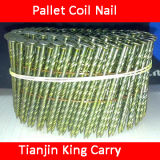 Ring Shank Coil Nails (NL008)