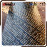 Buildplex Finger Joint Film Faced Plywood with Best Price