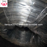 Hot-Dipped Galvanized Wire (TYH-027)