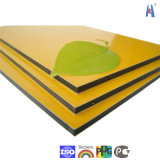 Competitive Price ACP Megabond PE PVDF Aluminium Composite Panel