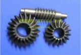 Machining-Bearing, Gear, Machining Service