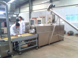 Corn Flakes (Breakfast Cereals) Processing Line