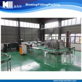 Long-Term Service Top Quality Auto Mineral Water Filling Machine