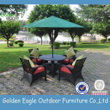 Popular Outside Sofa Sets Garden Furniture (TY0001)