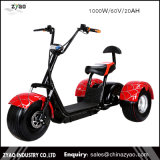 2017 New Manufacture Three Wheels Big Tire Trike ATV Advertising Trike