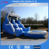Good Price Inflatable Water Slide with Pool for Kids