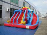Outdoor Inflatable Three Lanes Water Slide. Children Slide Rental