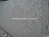 Polished Granite G602 Granite Slab