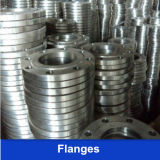 DIN Standard Ss Flange (304 304L 316L)
