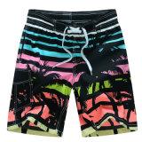 OEM New Cheap Beach Shorts
