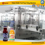 Fruit Pulp Automatic Packaging Machine