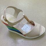 New Style Women PU Wedge Heel Sandals (JH016 -1)