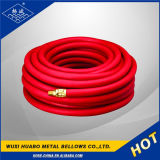 Ss304 Gas Pipe/Coalgas Pipe/Gas Pipe