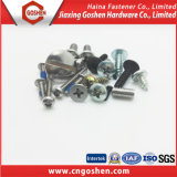 Fastener Screw/ Fastener Tapping Screw / Fastener Machine Screw / Fastener Drilling Screw