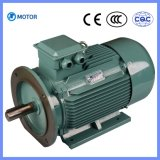 Durable Using Premium Efficiency Electric Motor 3 Phase