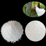 Dicalcium Phosphate 18% Powder or Granular China Supplier