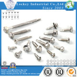 Stainless Steel Screw Ss304 / 316 Self Drilling Tapping Screw Tek Screw