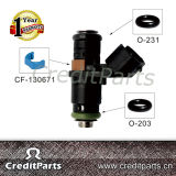 South America Market Injector Kits for Renault CF-030