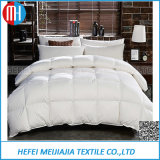 20 Years Home Textile Supplier in Quilt Pillow China