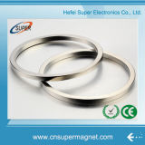Permanent Sintered N50 Large Ring NdFeB Motor Magnet