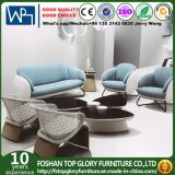 Classic Designed Outdoor Furniture Garden Sofa Patio Sofa (TG-1219)