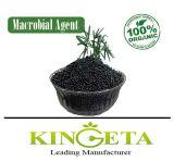 Agricultural Biochar Organic Fertilizer Plant Nutrients with Low Price