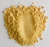 New Crop Good Quality Export Ginger Powder