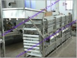 Multi Vegetable Fruit Grade Sorter Grading Processing Machine (WS)