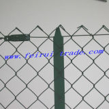 PVC Coated Chink Link Fence with T-Post for France Market