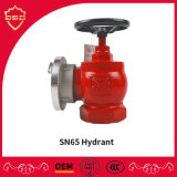 Sn65 Indoor Fire Hydrant