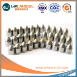 Tungsten Carbide Buttons for Drilling Tools