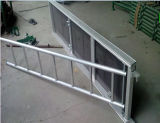 Galvanized Scaffolding Beam Ladder for Construction