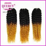 Malaysian Deep Curly Virgin Hair Cheap Grade 8A Malaysian Curly Human Hair Two Tone Omber Remy Hair #T1b/144 Hair
