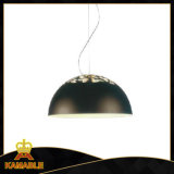 Modern Hanging Carbon Steel Aluminium Pendant Light (701S)