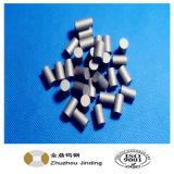 Hot Selling Carbide Cylinder, Solid Carbide Cylinder Blank
