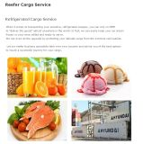 Reliable International Logistics Service From China to Montevideo Uruguay