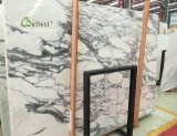 Arabescato White Marble Slabs and Tile for Bathroom, Vanity and Kitchen