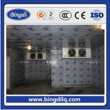 -18 Degree Freezer Duck Cold Room Store
